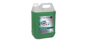 Detergente disinfettante multisuperficie Lysoform 5 L fragranza floreale 100887662 Immagine del prodotto
