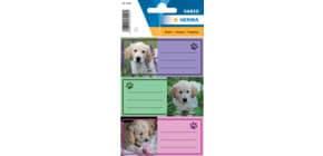 Schuletikette Hunde HERMA 5529 Produktbild