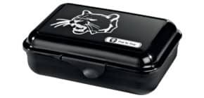 Jausenbox Wild Cat Produktbild