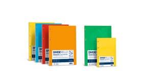 Divisore FAVINI Dividerello 20 tasti raccoglitori 10 col. assortiti 22x30cm 220 gr/mq  Conf. 20 pezzi - A56Y304 Immagine del prodotto