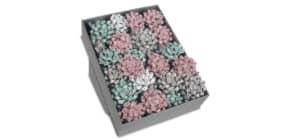 Weihn.Rosette Glossy sort. 704 40-099 80mm D. Produktbild