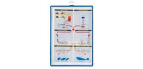 Prospektblatthalter A4hoch blau Produktbild