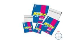 Blocco punto met. Blasetti BRISTOL copertina patinata 115 gr quad. 5 mm A4 21X29,7 cm - 1034 Immagine del prodotto