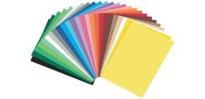 Fotokarton A4 50 Blatt 300g sortiert 615 50 99 25 Farben FOLIA 615/50 99 Produktbild