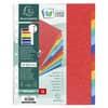 Exacompta Register Nature Future® - A4 Überbreite, blanko, Manila-Karton, 12-teilig, farbig