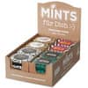 Lutschbonbons Mints Wild in the City sor FÜR DICH 424340 14gr