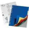 Durable Register - PP, blanko, farbig, A4, 5 Blatt